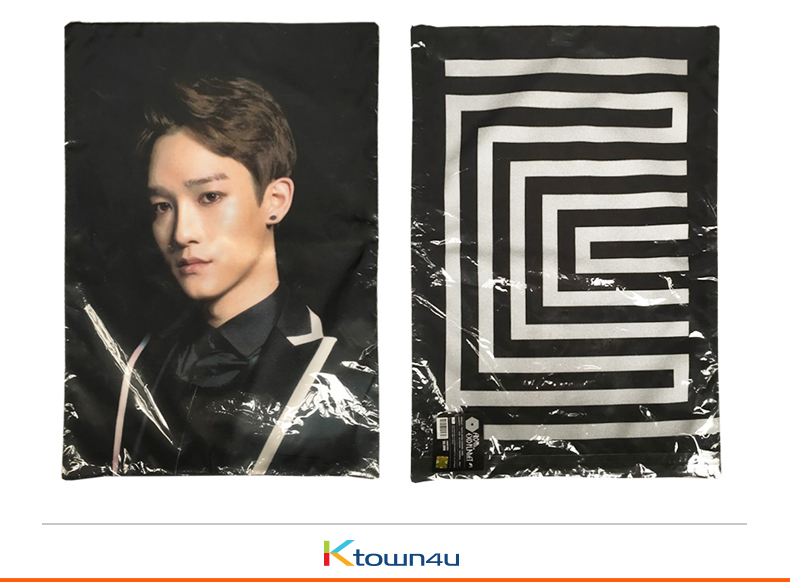 EXOPLANET #1 Cushion Cover (Suho) [EXO Concert Goods]